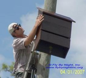 tgf small bat house install